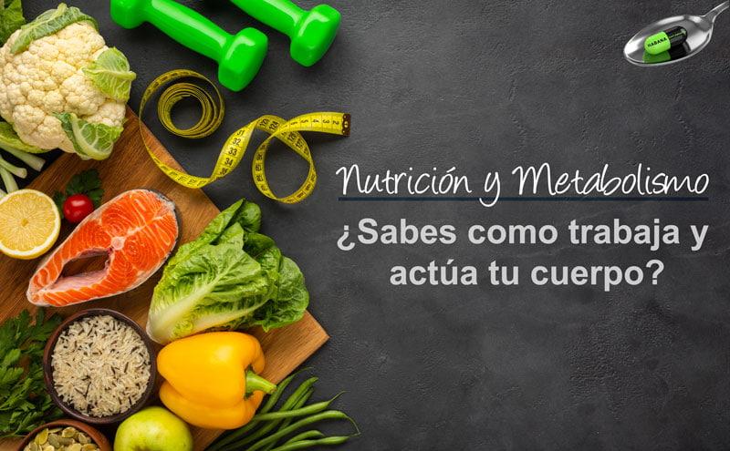 imagen de alimentos con texto